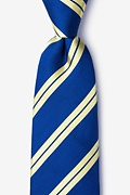Navy Blue Silk Blackwater Tie