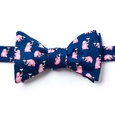 Pink Elephants Self Tie Bow Tie by Alynn Bow Ties
