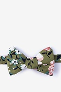 Olive Cotton Holden Butterfly Bow Tie