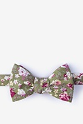 Olive Cotton Morris Butterfly Bow Tie