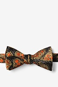 Hepatitis B Bow Tie