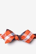 Kennewick Orange Diamond Tip Bow Tie Photo (0)