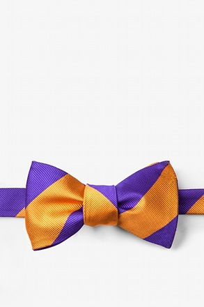 Orange & Purple Stripe Self-Tie Bow Tie
