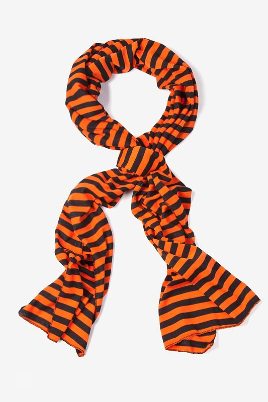 Mens Traveling Stripe Scarf Photo (3)