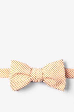Orange Chamberlain Check Butterfly Bow Tie