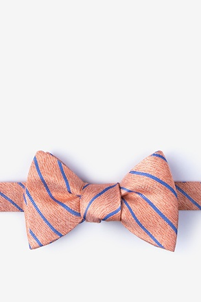 _Lagan Orange Self-Tie Bow Tie_