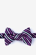 Pink Silk Lee Butterfly Bow Tie