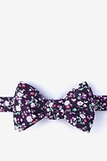 Purple Cotton Humber Butterfly Bow Tie