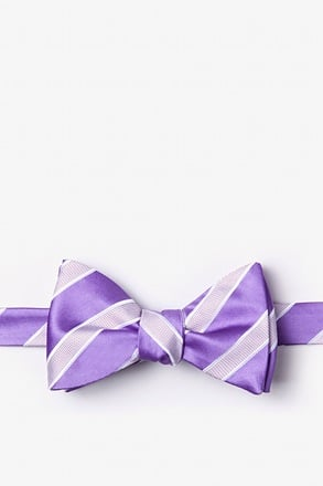 _Jefferson Stripe Purple Self-Tie Bow Tie_