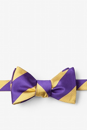 Purple & Gold Stripe Self-Tie Bow Tie