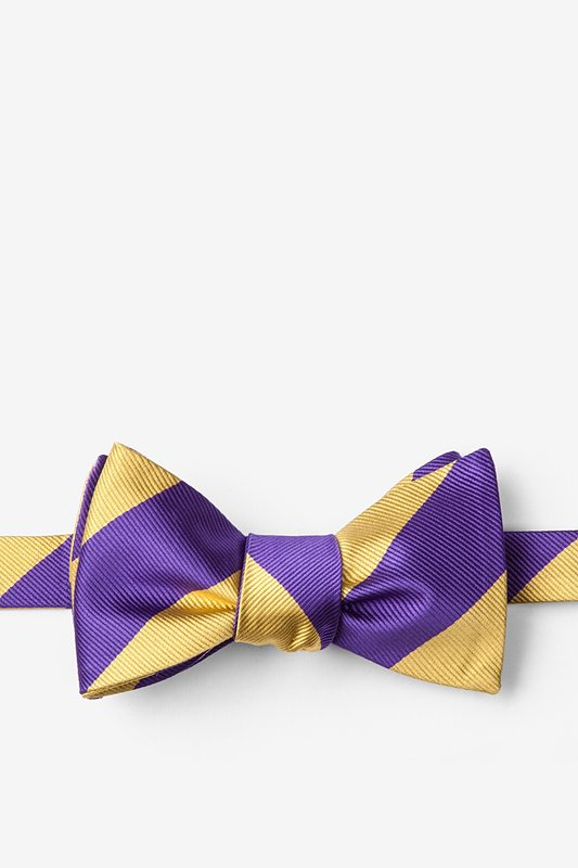 Purple & Gold Stripe Self-Tie Bow Tie Photo (0)
