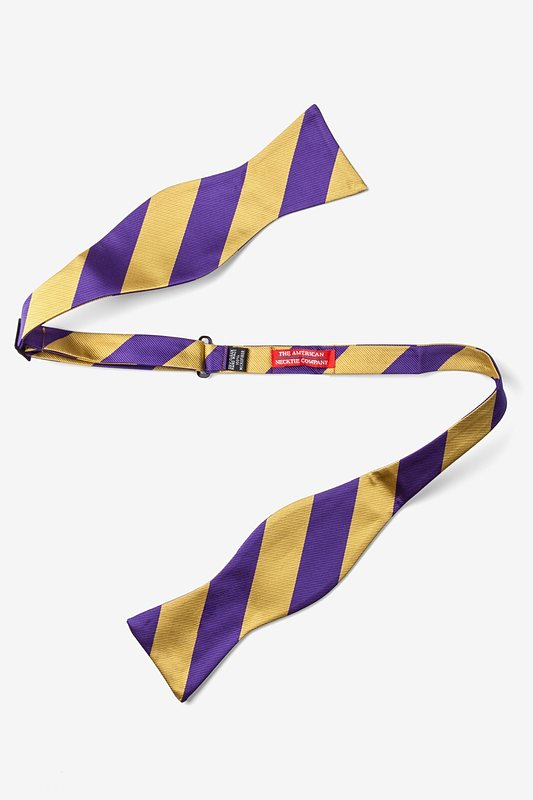 Purple & Gold Stripe Self-Tie Bow Tie Photo (1)