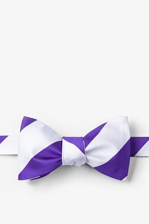 Purple & Off White Stripe Self-Tie Bow Tie
