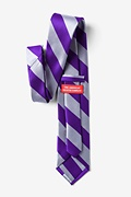 Purple & Silver Stripe Extra Long Tie Photo (1)