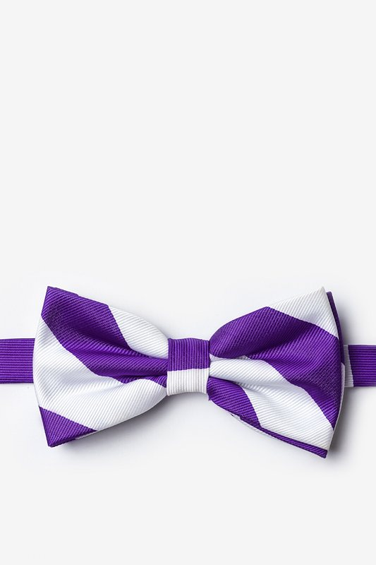 Purple & White Stripe Pre-Tied Bow Tie Photo (0)