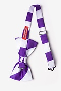 Purple & White Stripe Pre-Tied Bow Tie Photo (1)