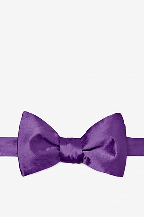 Purple Plum Butterfly Bow Tie