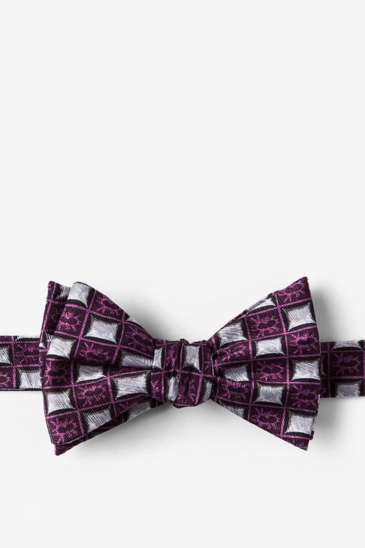 Bed Bugs Butterfly Bow Tie