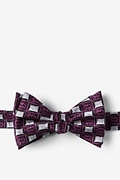 Purple Silk Bed Bugs Self-Tie Bow Tie