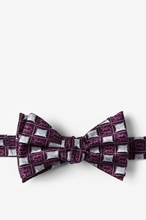 Bed Bugs Self-Tie Bow Tie