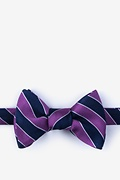 Purple Silk Fane Bow Tie