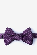 Robe Butterfly Bow Tie
