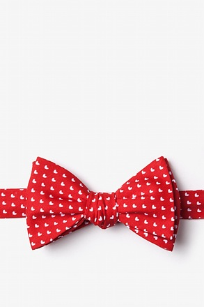 Bandon Butterfly Bow Tie