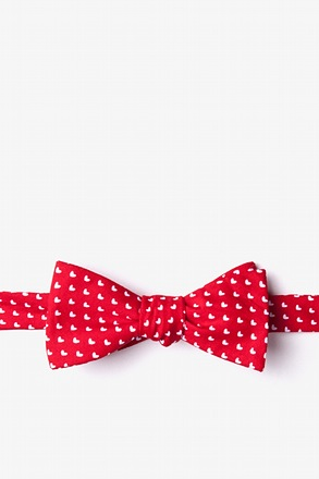 _Bandon Red Skinny Bow Tie_