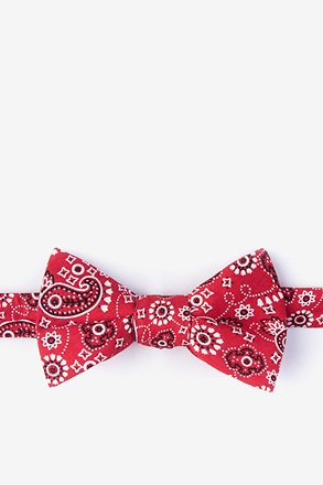 _Grove Red Self-Tie Bow Tie_