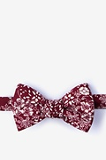 Red Cotton Sochi Butterfly Bow Tie