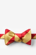 Red Microfiber Red & Gold Stripe Butterfly Bow Tie