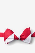Red Microfiber Red & White Stripe Butterfly Bow Tie