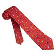 Football Fanatic Boys Tie by Alynn Novelty