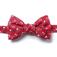 Piggy Went To Market Self Tie Bow Tie by Alynn Bow Ties