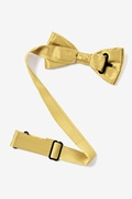 Rich Gold Bow Tie For Boys Photo (1)