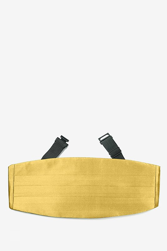 Rich Gold Cummerbund