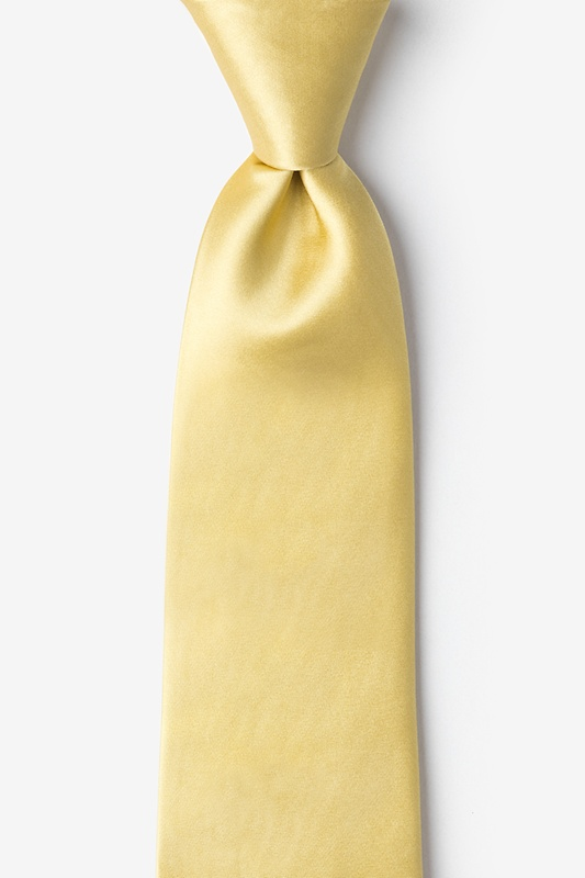 Rich Gold Extra Long Tie Photo (0)