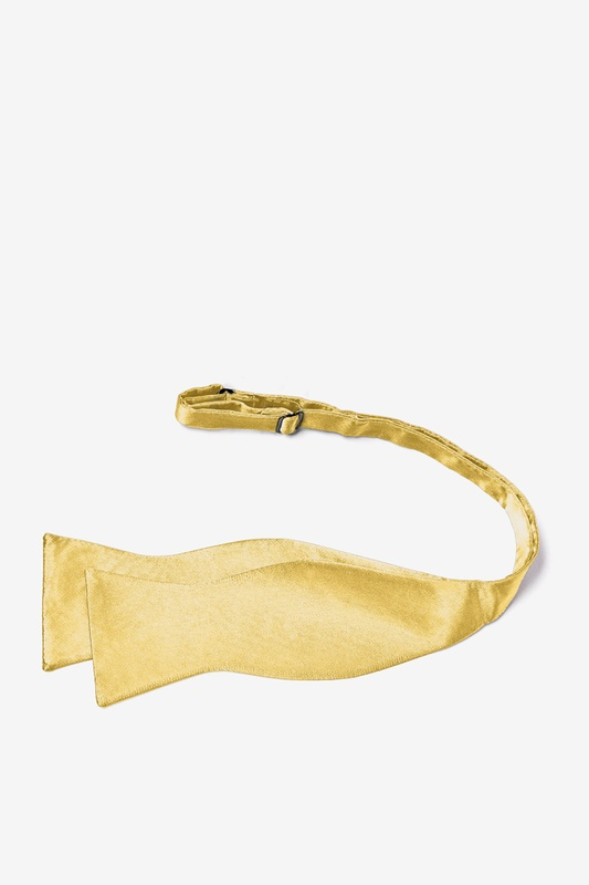 Rich Gold Self-Tie Bow Tie Photo (2)