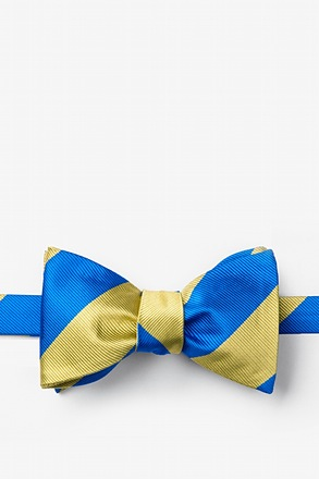 _Royal Blue & Gold Stripe Self-Tie Bow Tie_