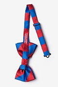 Royal Blue & Red Stripe Pre-Tied Bow Tie Photo (1)