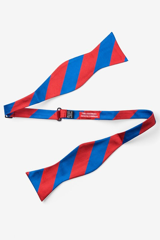 Royal Blue & Red Stripe Self-Tie Bow Tie Photo (1)