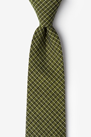 Holbrook Sage Extra Long Tie
