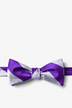 Silver And Purple Stripe Butterfly Bow Tie