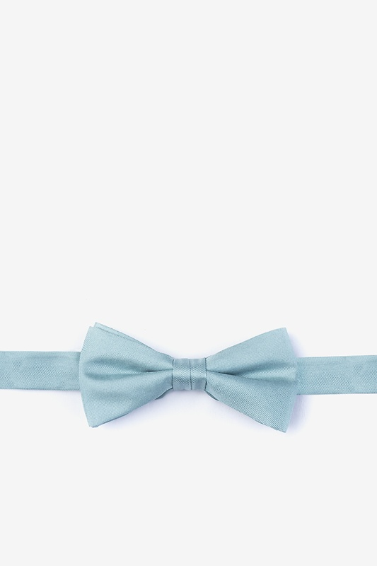 Silver Sage Bow Tie For Boys Photo (0)