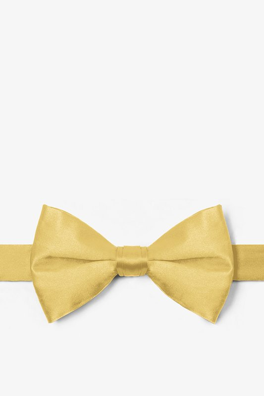 Sunshine Yellow Pre-Tied Bow Tie Photo (0)