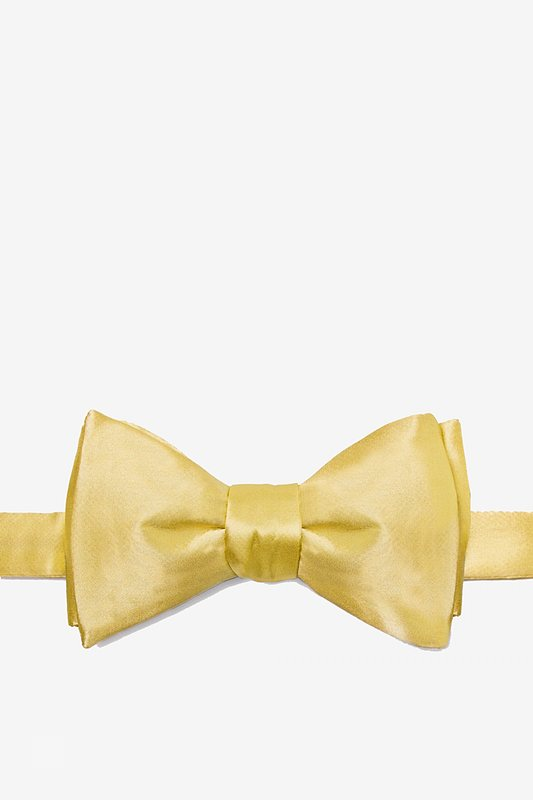 Sunshine Yellow Self-Tie Bow Tie Photo (0)