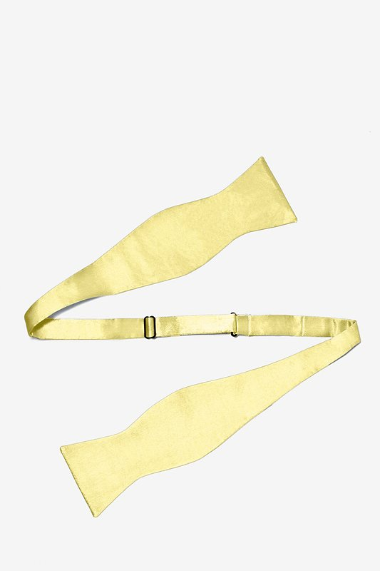 Sunshine Yellow Self-Tie Bow Tie Photo (1)