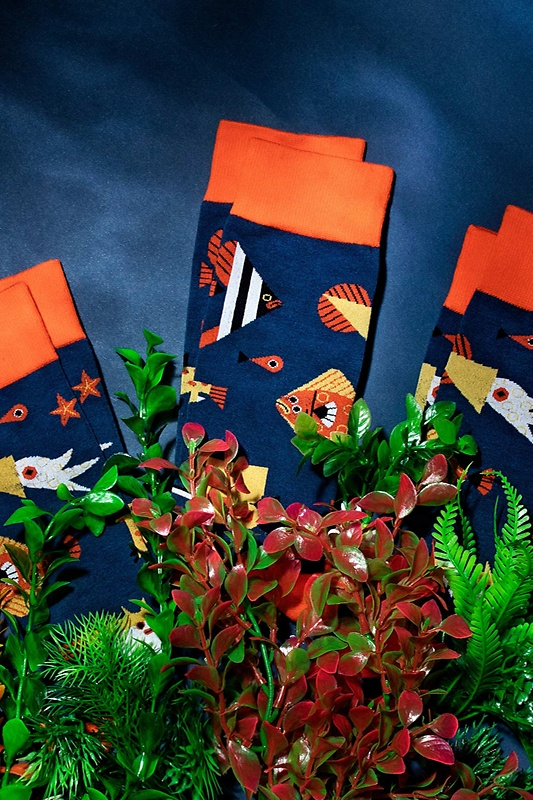 Alynn® X Owen Davey Fish Sock Photo (2)