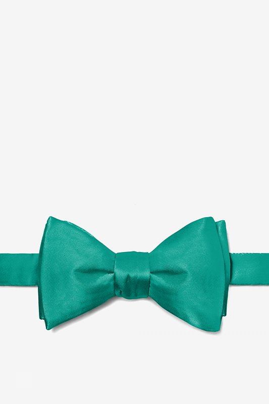 Teal Self-Tie Bow Tie Photo (0)