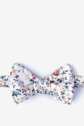 August Butterfly Bow Tie